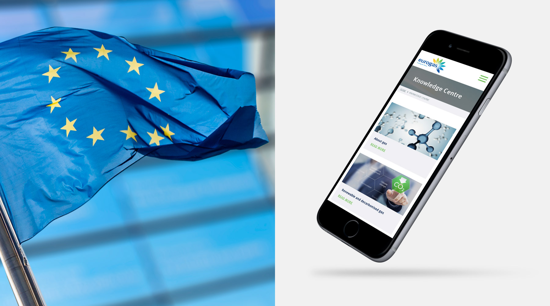 Case Study: Eurogas website 02
